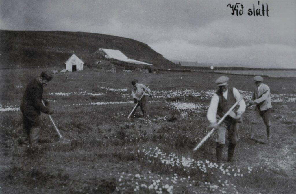 Gamalt póstkort með ljósmynd sem greinilega er tekin á Kollafjarðarnesi, Hvalsárdrangur er þarna í baksýn.